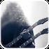 Die App vom Gitarren Wunder Dave Mustaine